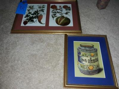 Matted and framed botanical Prints from a antique pharmaceutical book- 12 x 16 - 8 by 10