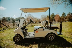 Golf Cart - Club Car with a gas engine and brand new battery. It also has a new back seat