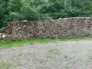 large lot of stacked cut fire wood