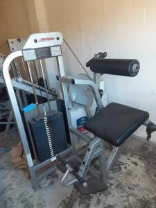 Life Fitness Low Back Extension Machine Primarily Works Out The Gluteus And Erector Spinae